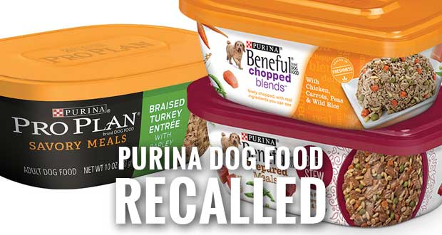 Purina Beneful And Pro Plan Dog Food Recall