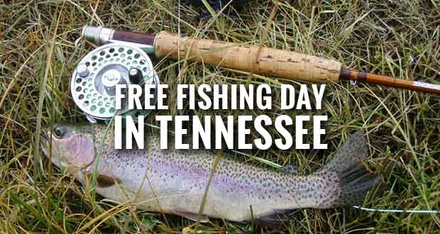 Free fishing day in tennessee for residents and visitors for Free fishing day